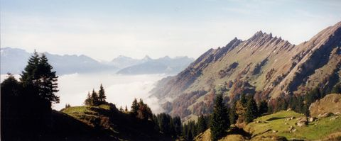 The Speer, which is quite low but nevertheless one of Switzerland's most beautiful mountains